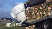 IMAGES: Tractor-trailers carrying chicken products, corn collide on I-95 in Johnston County