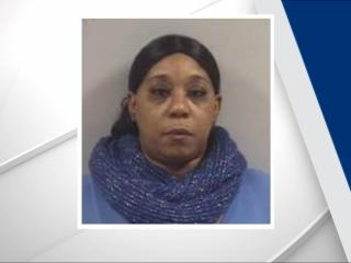Dalphina Davis faces fraud charges after investigators with the Johnston County Sheriff's Oiffce said she pretended to be a travel agent and stole around $3,100 from a Johnston County couple trying to book a holiday trip.