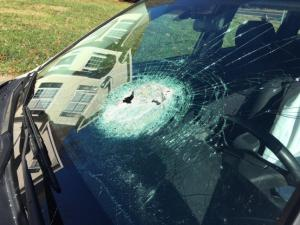 Seven people driving near Hickory Grove Church and Leesville roads in Raleigh on Tuesday night reported having rocks, and possible other objects, thrown at their vehicles.