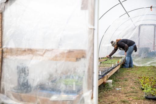 Benevolence Farm