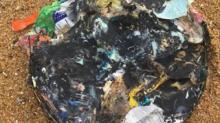 IMAGE: Smelly disks of trash wash up on Outer Banks