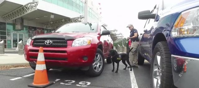 Bomb-sniffing dogs come to PNC Arena