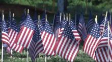 IMAGE: Field of Flags helps ground Balloon Fest visitors