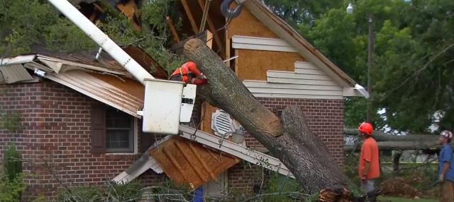 Strong storms cause tree to topple on Stedman Town Hall