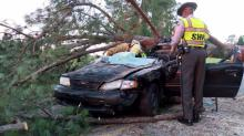 IMAGES: Driver trapped in car by fallen pine tree in Johnston County