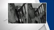 IMAGE: Surveillance camera captures men stealing TV from Durham home