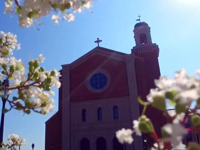 Holy Name of Jesus Cathedral in Raleigh opened on July 26, 2017.<br/>Photographer: Keith Baker