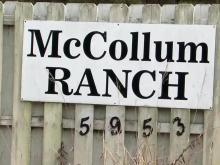McCollum Ranch sign