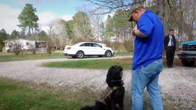 Rescued therapy dog saves life of veteran facing depression, suicide
