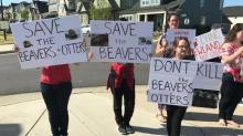 IMAGES: Photos: Chatham County residents protest HOA decision to kill 35 beavers