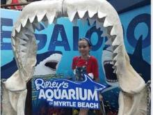 Possible shark attack in Myrtle Beach
