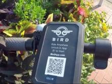 Some feathers ruffled as Bird scooters land in Raleigh