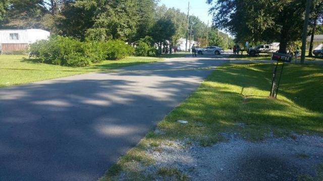 Woman's body found on Greenville road. Credit: WITN