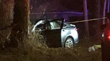 IMAGES: Man dies after hitting tree when fleeing police