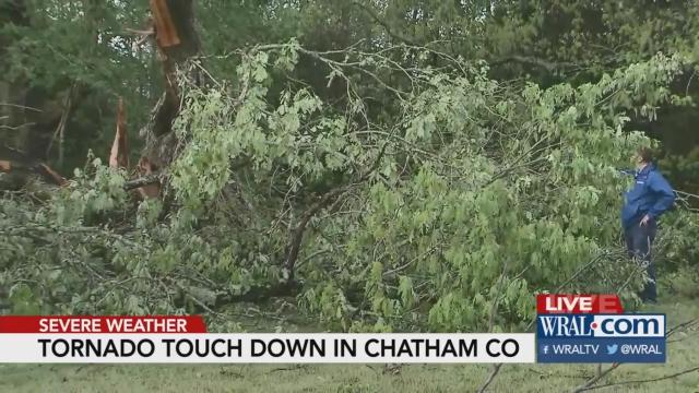 Chatham County tornado snapped, twisted huge trees :: WRAL com