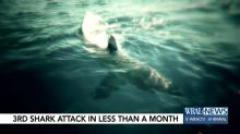 IMAGE: NC coast sees third shark encounter this month