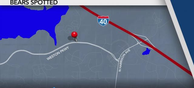 Durham bear sighting map
