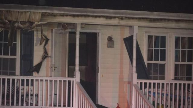 Cat rescued from Angier house fire