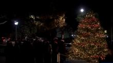 IMAGES: Mothers Against Drunk Driving lights up 'Tree of Life'