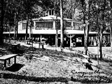 Bloomsbury Park carousel and dance hall were trendy hangouts in the 1910's in Raleigh. Image courtesy of the North Carolina State Archives