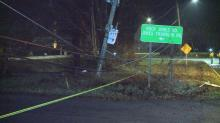 IMAGE: Car crashes into tree near Western Boulevard, brings down power lines