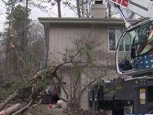 Trees down on homes, in yards at many Raleigh locations