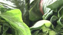 IMAGE: New program feeds unemployed workers while supporting local farmers