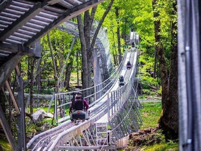 Courtesy: Wilderness Run Alpine Coaster attraction in Banner Elk