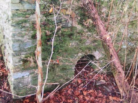 Remains of Cabe's mill.
