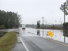 High water on road in Edgecombe County