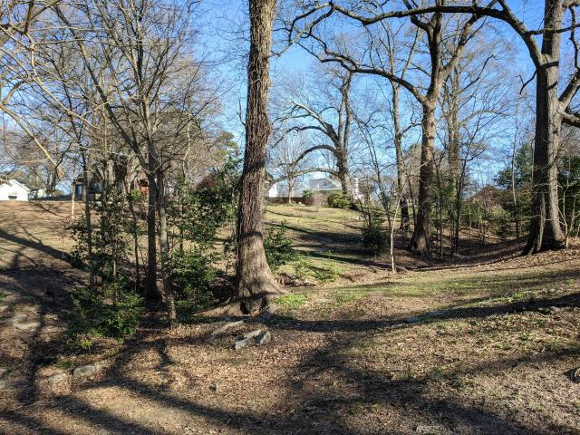 Rolling earth near the Mordecai neighborhood, where dramatic changes in topography run along where maps show the wall to have once stood. (Image courtesy of Al Bredenberg, who runs the Raleigh's Wall website.)