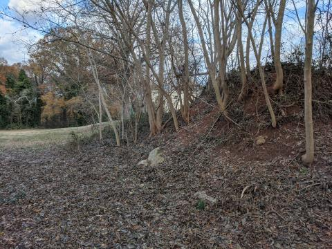 Earthen mound between Richardson Dr and the RR track, which could be remains of the earthworks. (Image courtesy of Al Bredenberg, who runs the Raleigh's Wall website.
