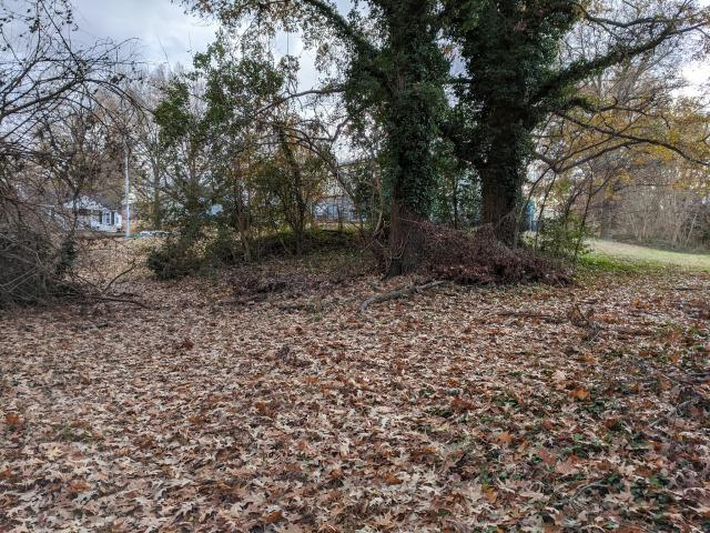 Earthen mound off the north corner of the maintenance building at the bottom of Richardson Dr., which could be remains of the earthworks. (Image courtesy of Al Bredenberg, who runs the Raleigh's Wall website.