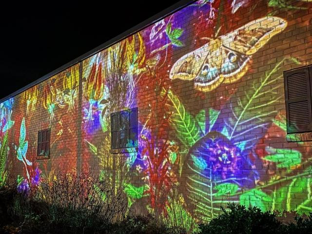 Surprise! New virtual reality mural appears in downtown Cary