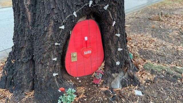 Fairy door on Glenwood Avenue in Raleigh