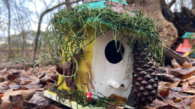 While you're walking in the Annie Wilkerson Nature Preserve, be sure to check out the fairy trail -- filled with homes for the fairies to visit.