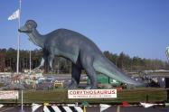IMAGES: Remembering Raleigh: When life-sized dinosaurs roamed North Hills