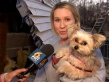 Dog found after deadly tornado