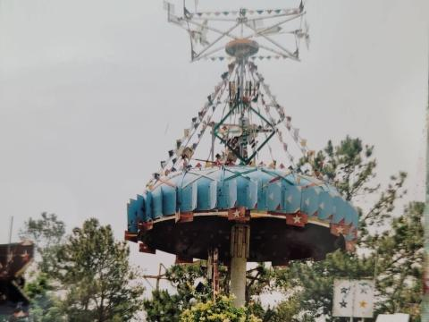 A whirligig back in its original home on Simpson's farm in Lucama, NC. (Image courtesy of Donna Betts)