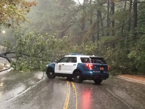 La policía de Raleigh tuiteó esta imagen de un árbol ahogado en Dixon Drive.  Imagen cortesía de la policía de Raleigh.