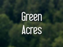 Focal Point: Green Acres