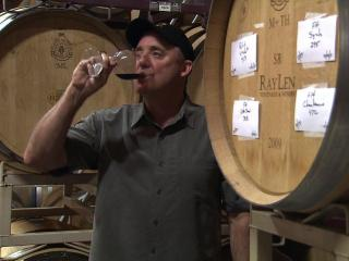 barrel tasting with Steve Shepard, winemaker at RayLen Vineyards and Winery and president of the NC Winegrower's Association