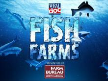 Fish Farms: Aquaculture industry thriving in North Carolina's backyard