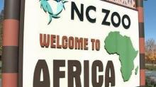 IMAGES: NC Zoo looks at $110M expansion