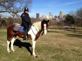 A Virginia woman donated a painted/draft horse to the Raleigh Police Department's mounted patrol.