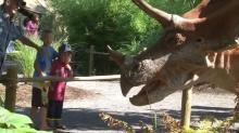 dinosaurs at the NC Zoo