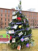 Nine non-profits earned prizes ranging from cash to experiences to a free public-service announcement campaign in the third annual Triangle Tree Challenge.