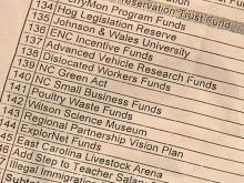 Group: House Budget Document Heavy on Pork