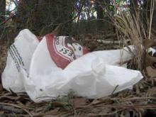 Bag ban would cut down on litter