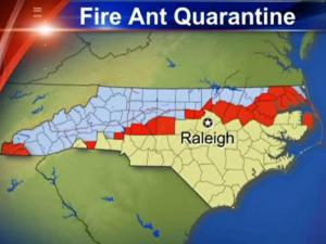 The fire ant quarantine area